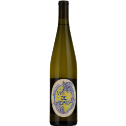 2019 Vin de Days Blanc CASE